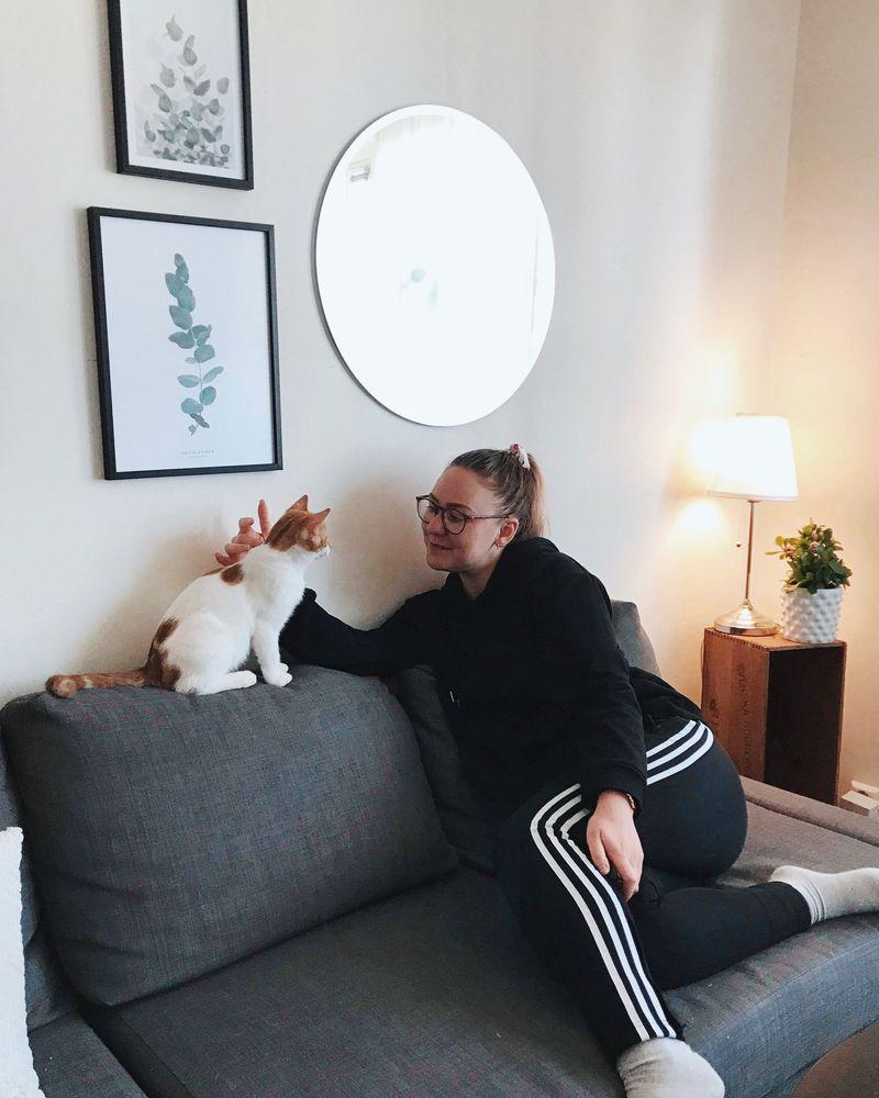 Person på soffa klappar en katt.